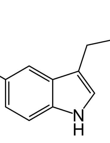 Endorfine