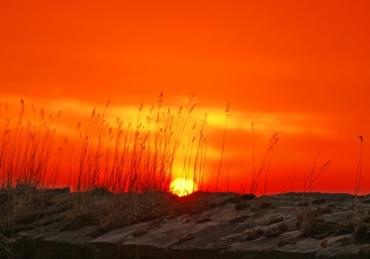 Il Sol dell'Avvenir