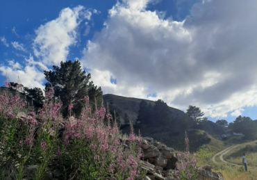 L'estate sulle montagne di Sivas